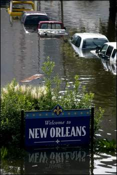 Venice On The Bayou