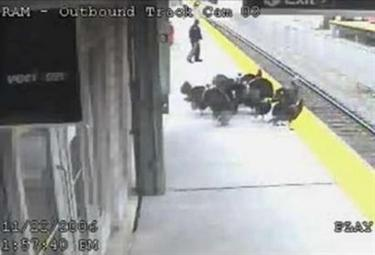 In a security camera photo released by New Jersey Transit, a flock of wild turkeys stands on the platform at the Ramsey train station in Ramsey, N.J., Wednesday, Nov. 22, 2006. NJ Transit spokesman Dan Stessel says the turkeys flew away after this video image was taken and it is unknown where they came from. (AP Photo/NJ Transit)