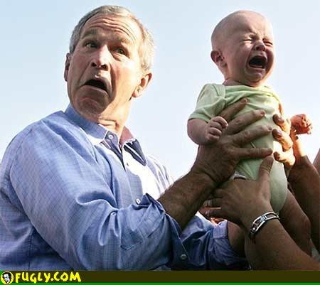 bush-baby.jpg