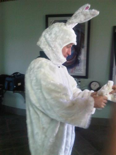 From ac: in IA for story on ape communication. The apes asked me to dress as a rabbit. Weird, huh?
