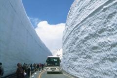 Japan snow 2 small.jpg