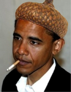Obama, a wholly owned subsidiary of ACORN