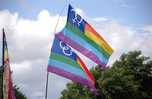Homosexuality Flags