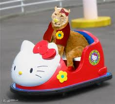 kitty car