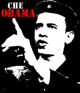 13-1217 - Che Obama