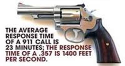 14-0102 - Police Response 500x267