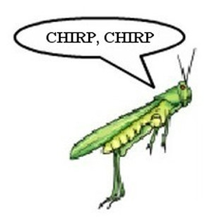 cricket chirping