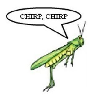 cricket chirping wizbang