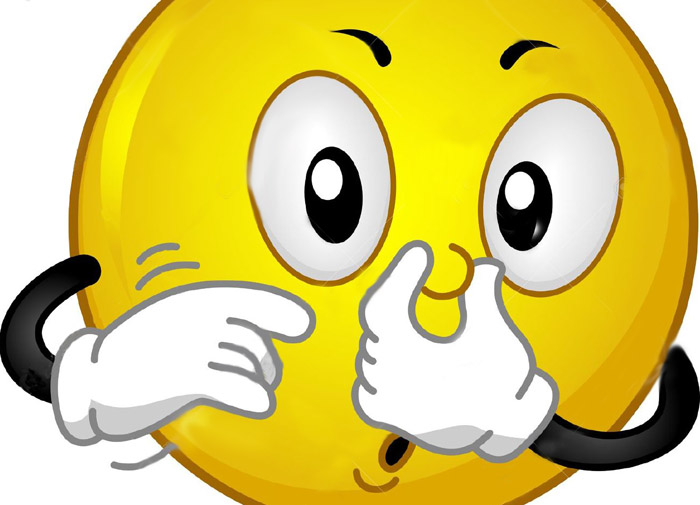 nose_holding_emoji
