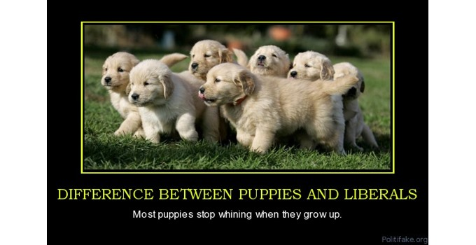 Puppies v. Liberals