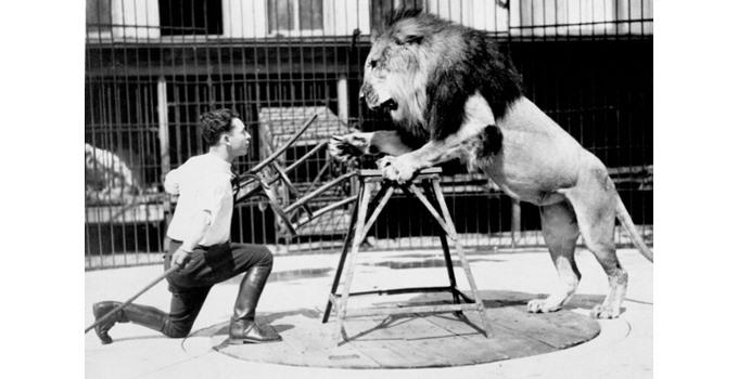 clyde beatty lion tamer