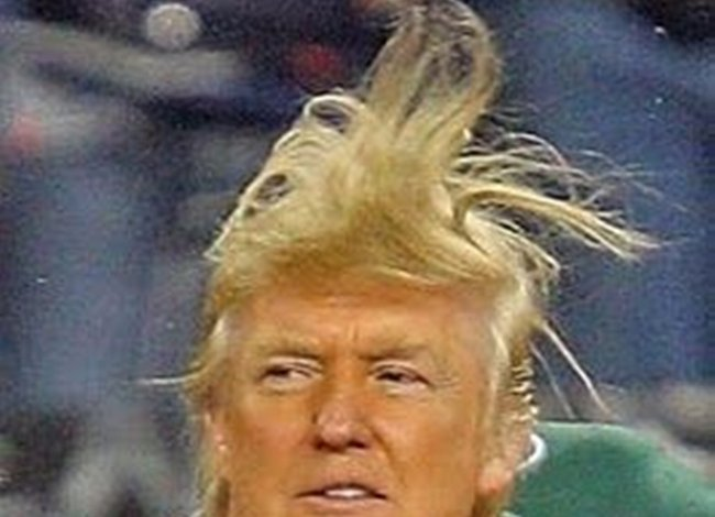 The Donalds Hair
