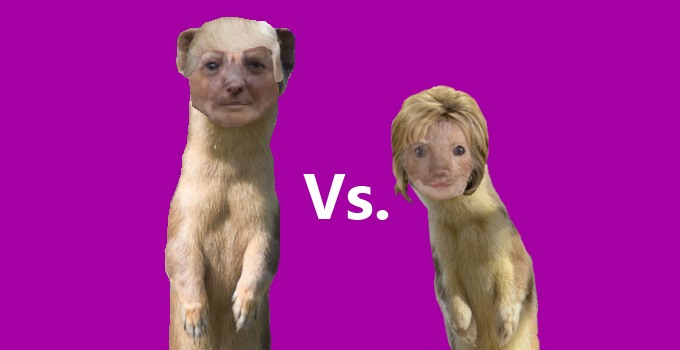 Weasels Trump and Clinton